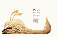 Duck Duck Duck