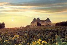 Chateau Elan...