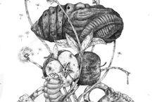 ilustracje-owady