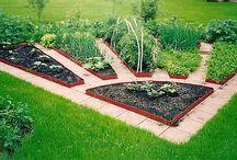 Садово-огородный. Грядки, клумбы