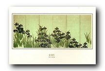 Irises Flowers Art Posters