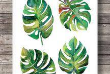Bladeren plant