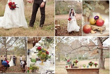 wedding planning ideas / by Heather Cook