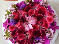Sam Flower Show