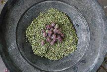 Cyclades Organics / organic herbs Syros Cyclades Greece