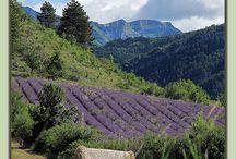 ma region Rhône-Alpes