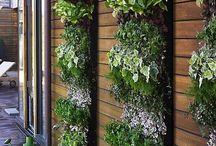 Interiors - vertical garden
