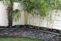 Future garden ideas!