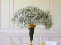 Yellow Weddiing / Wedding Tablecloths