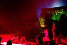 King Kong, nouveau spectacle du cirque Medrano