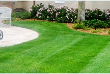Landscape/Lawn Maintenance