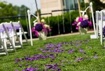 Lovely Lavender Weddings