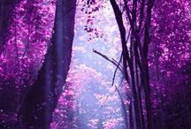 million shades of purple