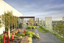 Landscape - rooftop gardens