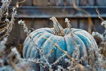 Осенний декор и вдохновение
