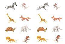 UD: Animals salvatges