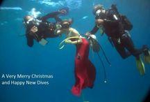 Merry Christmas / Nurkowanie
