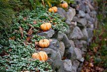 Podzimní výzdoba zahrady / Zahradu na podzim rozzáří barevné listí, plody, podzimní květiny... a milé dekorace a nápady.