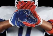 Boise State Broncos / by LaDonna Netjes
