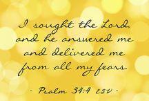 Trust / Faith / vertrouwen