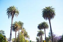 Los Angeles Trip / by Stephanie Curran