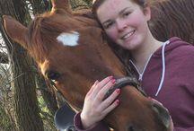 paard en mens