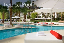 TropLV Pool / by The NEW Tropicana Las Vegas - A DoubleTree by Hilton