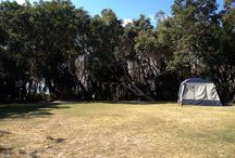 Home Beach Camping Ground / www.straddiecamping.com.au/thankful-rest.php