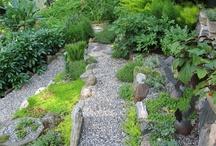 Zen Garden Design Ideas