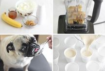 Pet Treats/Recipes