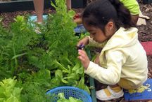 Gardens for kids / Many great ideas to get children involved with the garden.