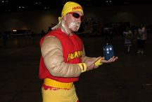 "Inspiration for ""Hulk Hogan Fans Are The Best, Brother!"""