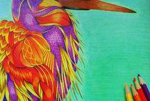 Millie Marotta / Dierenrijk kleurboek