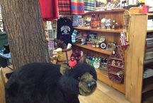 Photo Tour of the Store / Snapshot views of our store and a sampling of the Adirondack goodies in it