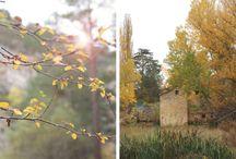 Once a Day / Las fotografías que publico en el blog Once a Day