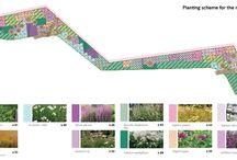 SUDS  & GI plants