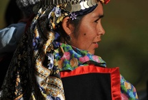 Chile / South America   -   Chilean - white and white-Amerindian 95.4%, Mapuche 4%, other indigenous groups 0.6%