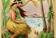 Hawaii oasis