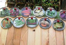 Garden Ideas / Anything outdoors
