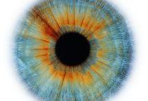 Blythes eyes