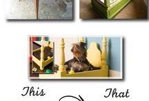 Hunde Ideen