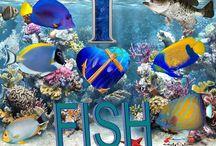 I Love Fish / design my 14 year old did