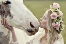 Wedding / Weeding