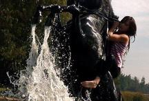 Čierne Kone