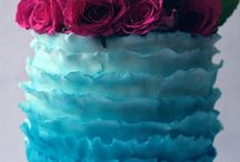 Raspberry and Teal
