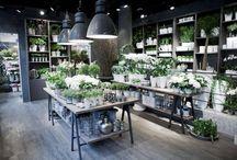 flower shop deco