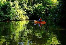 Turismo Nacional: Costa Rica / Ubicado en Centroamérica, Costa Rica es una joya que posee playas, bosques, ríos, volcanes y reservadas que la hacen un atractivo turístico importante.  No te pierdas de los mejores lugares que te ofrece este maravilloso lugar.