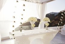 White roses avalanche+ in full bloom