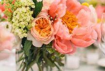 Wedding Design - Peach, White and Navy