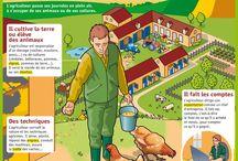 Agriculteurs et fermes